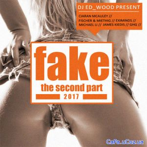 Fake - The second part (2017)